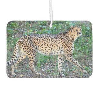 Cheetah Photo Air Freshener