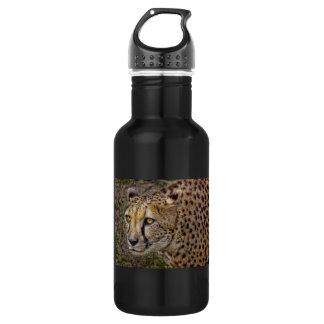 Cheetah Profile 532 Ml Water Bottle