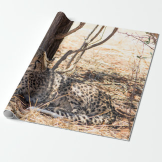 Cheetah relaxing under a tree wrapping paper