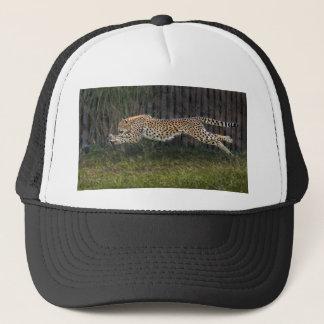 Cheetah Run Ball Cap