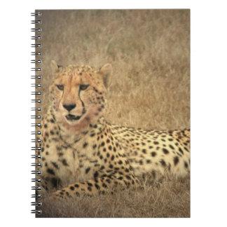 Cheetah Spots Notebook