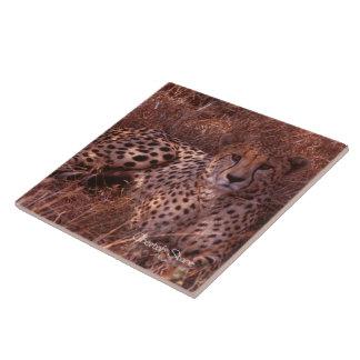 Cheetah Stare Large Square Tile