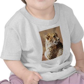 Cheetahs beauty in Africa Tee Shirt