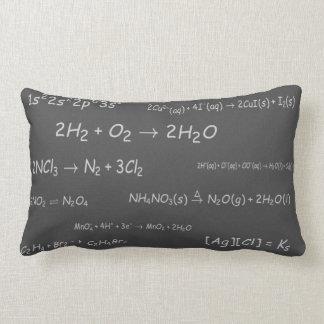Chemical Reactions on Blackboard Lumbar Cushion