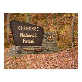 Cherokee National Forest sign in fall in Tennessee Postcard