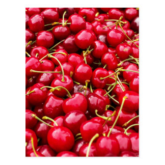 Cherries Postcard