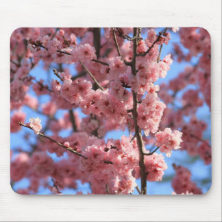 Cherry Bloosom Mouse Pad