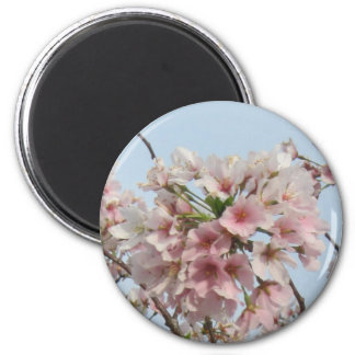 Cherry Blossom 6 Cm Round Magnet