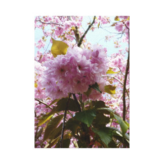 Cherry Blossom and Leaves Stretched Wrapped Canvas Gallery Wrapped Canvas