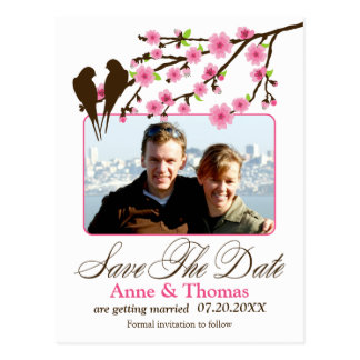 Cherry Blossom and Love Birds Photo Save The Date Postcard