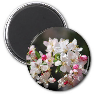 Cherry blossom and meaning fridge magnet
