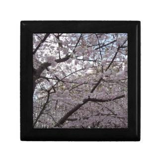 Cherry blossom, black lacquer gift box