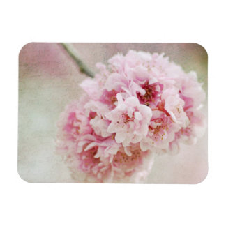 Cherry Blossom Botanical Flexible Magnet