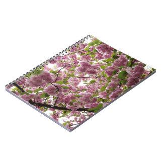 Cherry Blossom Canopy II Notebook