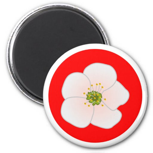 Cherry blossom cherry blossom refrigerator magnets