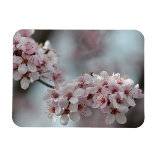 Cherry Blossom Floral Rectangular Photo Magnet
