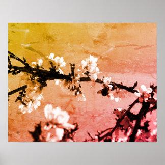 Cherry Blossom Flowering Tree Art Poster Print