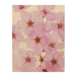 Cherry Blossom Flowers in Tokyo Japan Wood Print