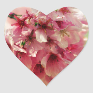 Cherry Blossom Heart Sticker