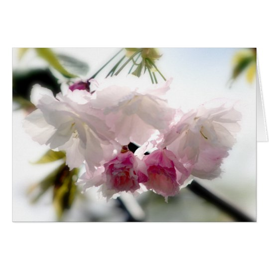 Cherry Blossom Notecard