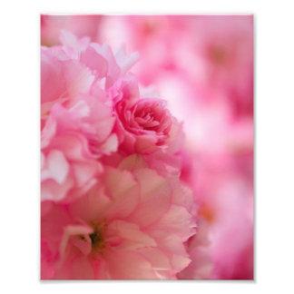 Cherry Blossom Photo Art