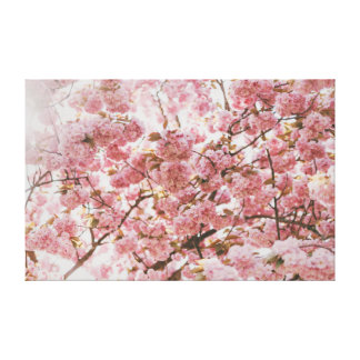 Cherry Blossom  | Pink | Meditation Canvas Print
