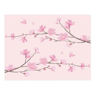 Cherry Blossom - Pink Postcard