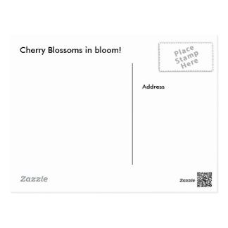 Cherry Blossom Post Card