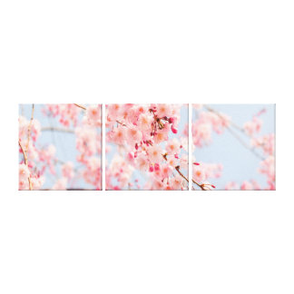 Cherry Blossom Rose Blue  Gallery Wrap Canvas Canvas Print