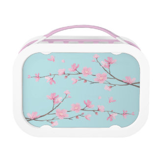 Cherry Blossom - Sky Blue Lunch Box