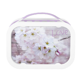 Cherry Blossom Style Lunchboxes