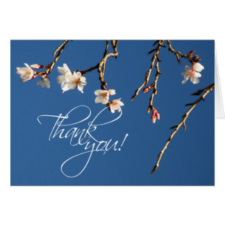 Cherry Blossom Thank You Note Card