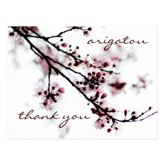 Cherry Blossom Thank You Postcard