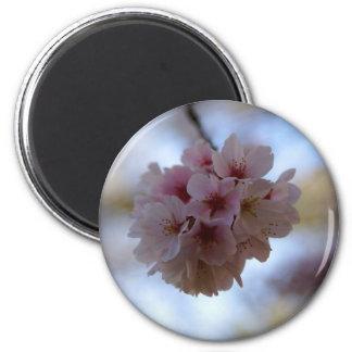 Cherry Blossom Time 6 Cm Round Magnet