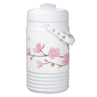 Cherry Blossom - Transparent Background Drinks Cooler