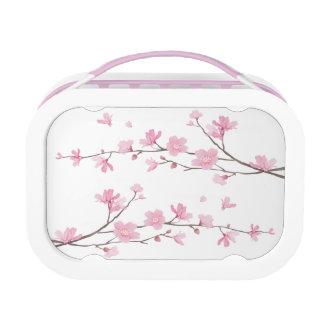 Cherry Blossom - Transparent Background Lunchbox