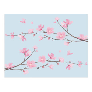 Cherry Blossom - Transparent-Background Postcard