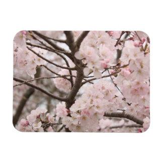 Cherry Blossom Vinyl Magnets