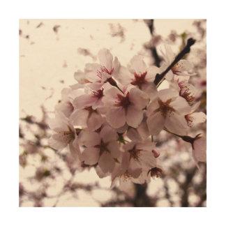 cherry blossom wall wood print