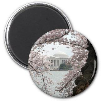 Cherry Blossom Washington DC 6 Cm Round Magnet