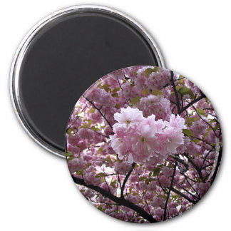 Cherry Blossoms 6 Cm Round Magnet