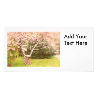 Cherry Blossoms and Old Wagon Wheel Personalized Photo Card