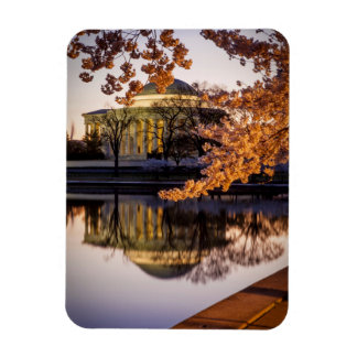 Cherry Blossoms And The Jefferson Memorial 2 Rectangular Photo Magnet