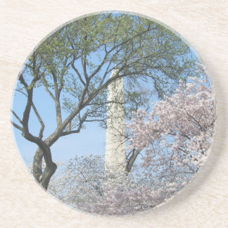 Cherry Blossoms and the Washington Monument in DC Coaster