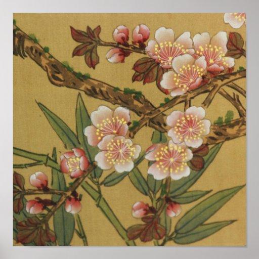 Cherry Blossoms Asian Japanese Art Poster