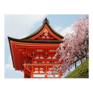 Cherry blossoms at Kiyomizudera postcard