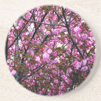 Cherry Blossoms Drink Coasters