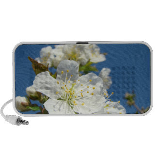 Cherry Blossoms Doodle Speakers gifts Spring Flora