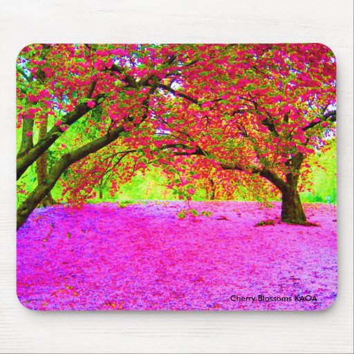 Cherry Blossoms in Central Park Mouse Pads
