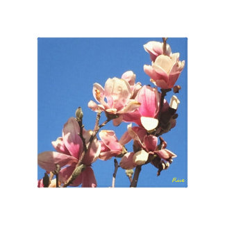 Cherry  Blossoms in Omaha-painting Canvas Print